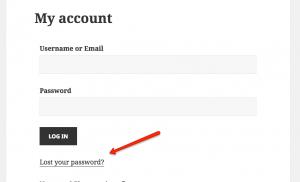 Lost password link