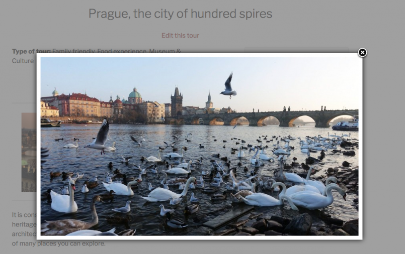 Opened gallery image with lightbox effect by Easy FancyBox plugin