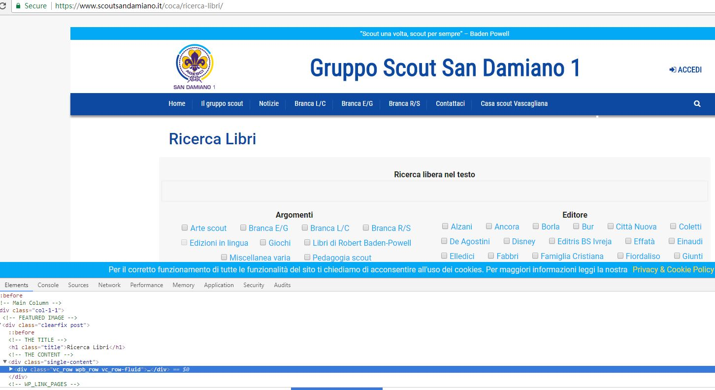 scoutsandamiano.JPG