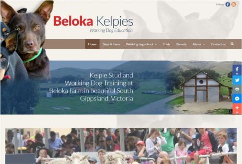 Beloka Kelpies